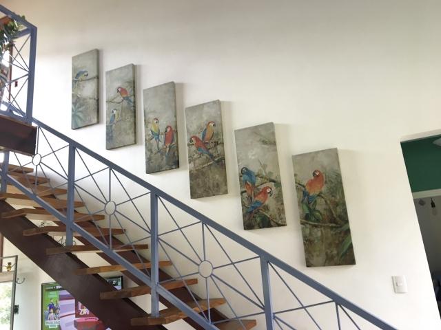 Acesso para o mezanino, que dá vista para a Serra  da Babilônia; na parede, araras na visão artística.