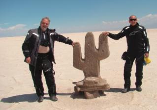 No Deserto de Atacama - Grande Salar - esse cacto é uma escultura de sal.