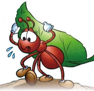 Vida de Formiga