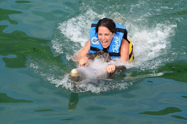 Gleice nadando com um golfinho em Tortola.
